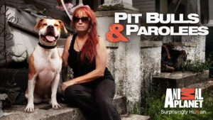 Pitbulls and Parolees